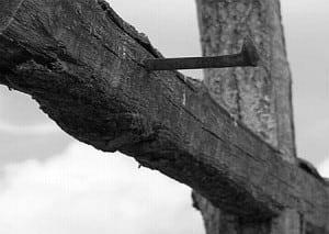 rastignirea-crucificarea-crucea