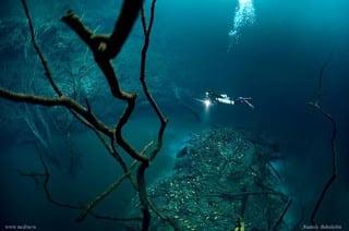 Marea Neagra 5
