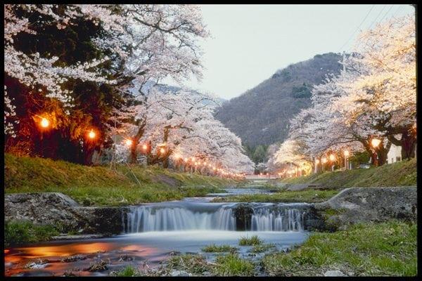 japonia 4