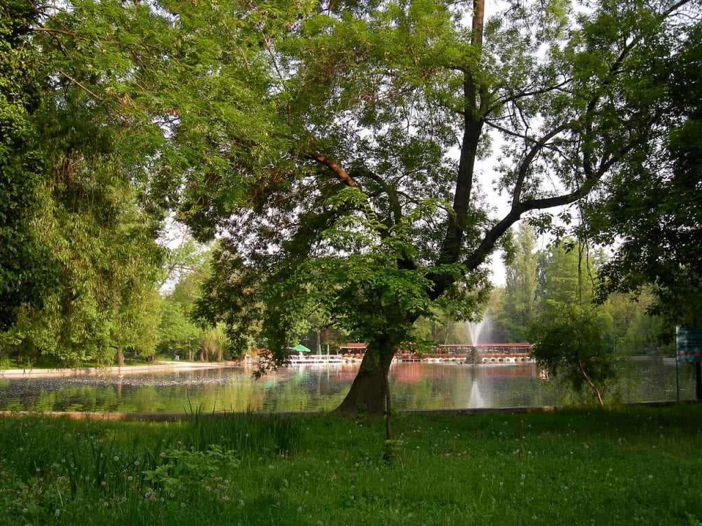 lacul cismigiu