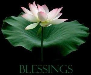 blessings_018-300x249