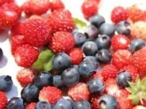 Fructele de pădure