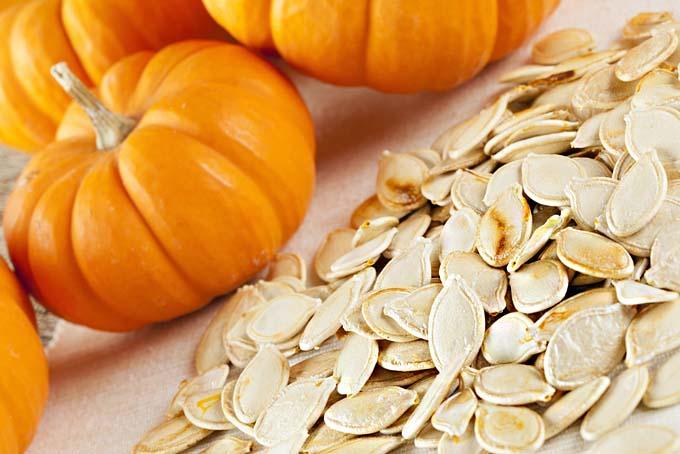 semințele de dovleac