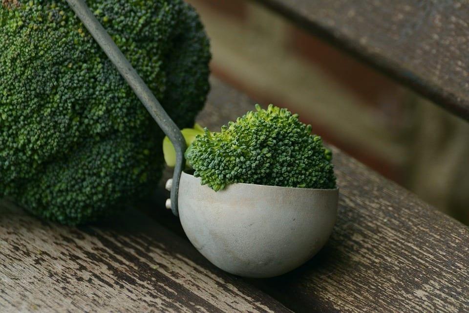 broccoli-dim