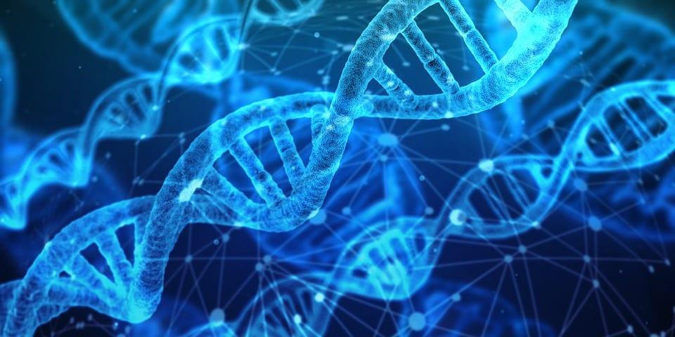 Mutaţii genetice