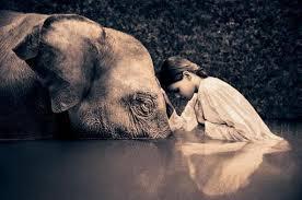 compasiune