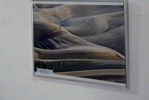 expozitie 1