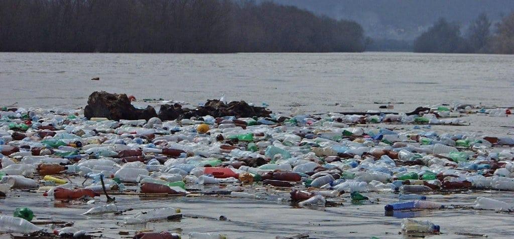 Efectele negative ale plasticului