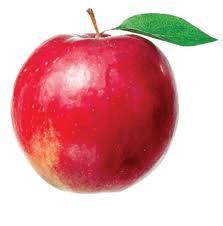 Coaja mărului
