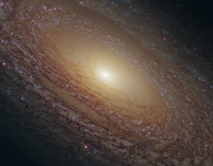 galaxiengc2841