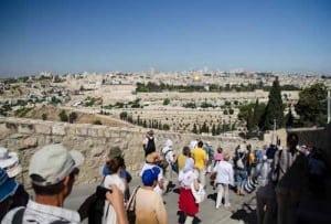 2013-05-27-16-Ierusalim-Muntele-Maslinilor-Drumul-Floriilor-Din-Betania-spre-Ierusalim