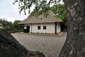 Casa Ion Creangă 3