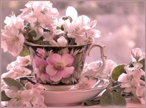 vin-floriile-duminica-i-aproape-imi-varui-pomii-ga_a4ed8782e10e10