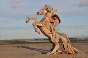 Knock-on-Wood-Driftwood-Sculptures-România