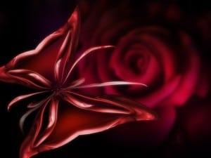 desktop-wallpaper-desk-top-wallpaper-flower1024-x-768-230-kb-jpeg-x