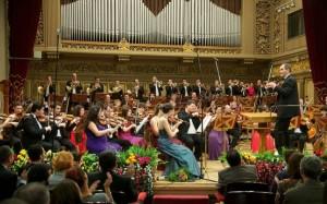 orchestra tineret
