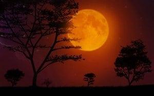 forma de lămâie a lunii