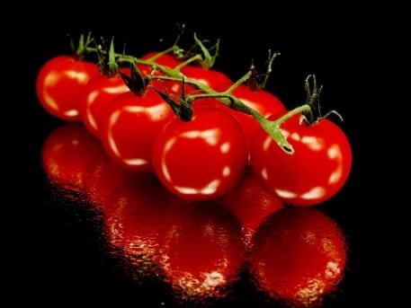 roșiile