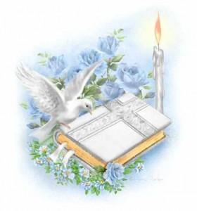 bible-dove