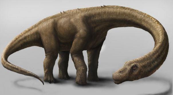 dreadnoughtus1