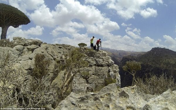 Socotra, tărâmul ascus