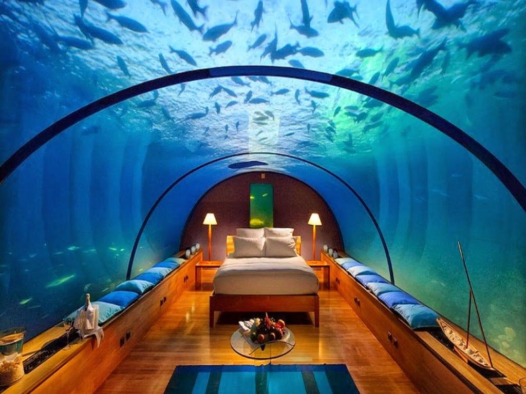 Amazing room Wallpaper__yvt2