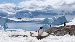 Permafrostul din Antarctica