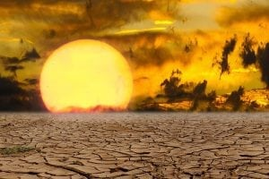 24 decembrie - cea mai calda zi