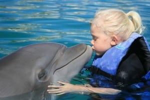 Dolphin Kids Tour SJC (2)