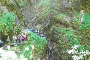 Peștera Ghețarul