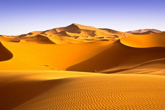 desert Sahara