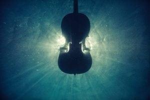 instrumente - vioara