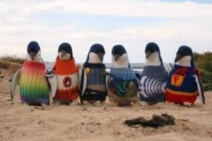 pulovere pentru pinguini