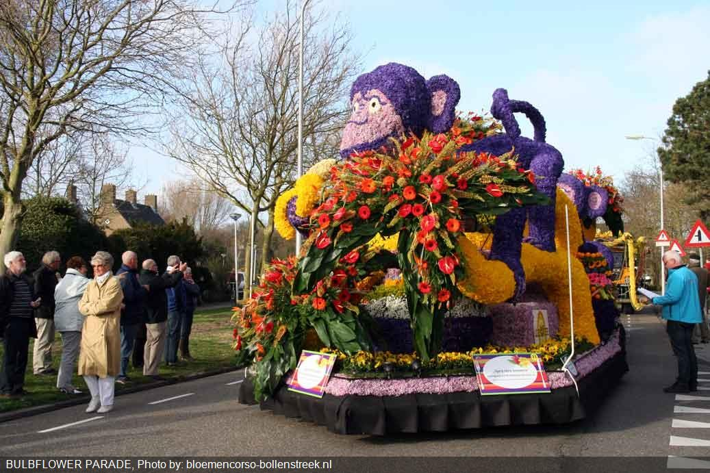 bulbflower_parade
