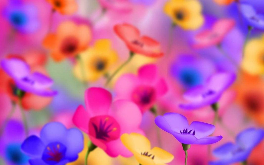 culori-cu-vise-si-flori-1280x800