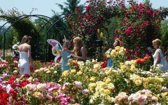 """Rozariul """"Eutopia Gardens"""""""