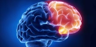 îmbătrânire creier
