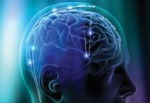 proces cognitiv