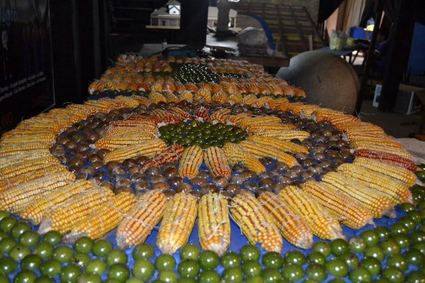 el-altar-del-papa-francisco-llevara-adornos-de-coco-natural-maiz-y-calabaza-_860_573_1229291