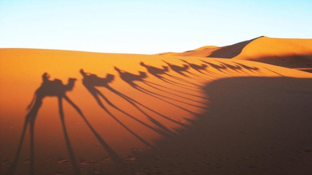 Sahara-Desert-8