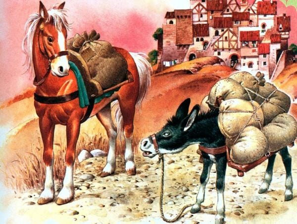 calul si magarul