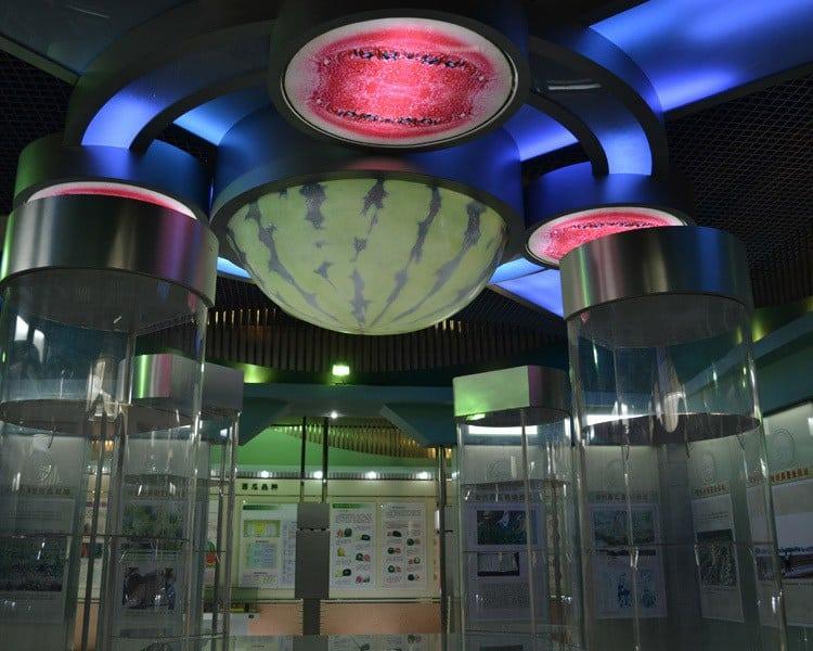 muzeul-pepenelui-1