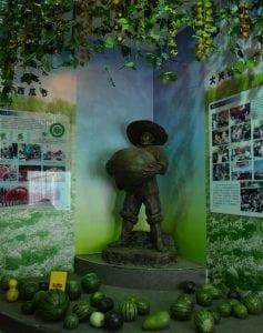 muzeul-pepenelui-2