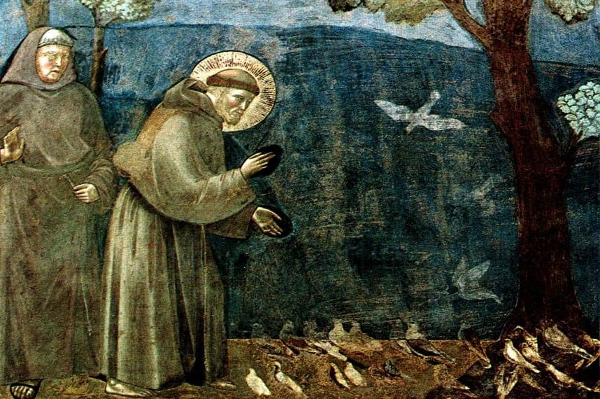 saint-francis-jpeg-photo1
