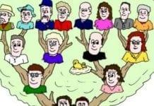 arbore-genealogic