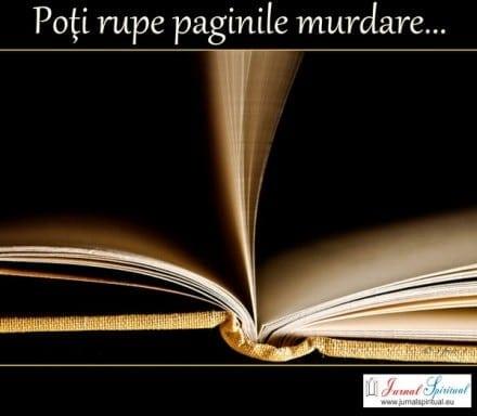 Poţi rupe paginile murdare...