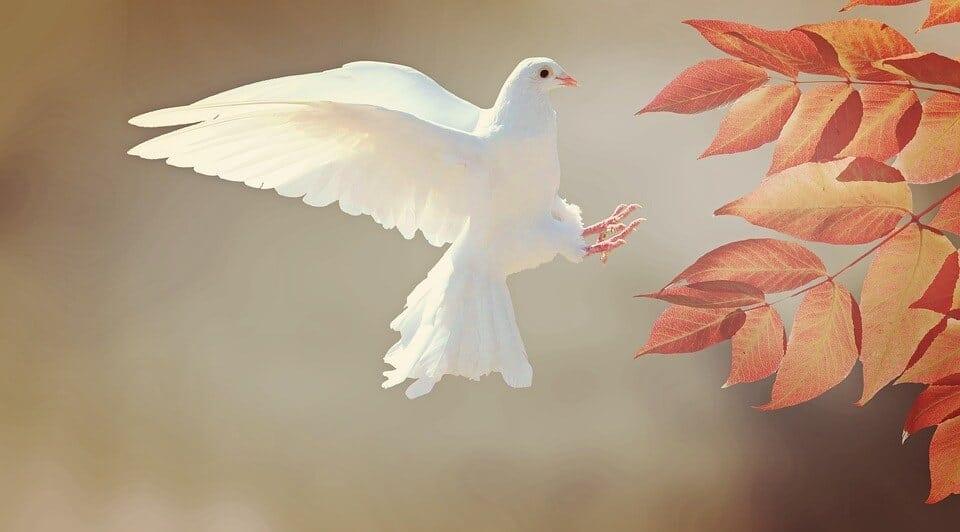 Despre tulburările lumii de astăzi: Sâmbătă poporului lui Dumnezeu