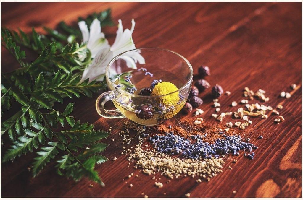 afecțiuni plante medicinale