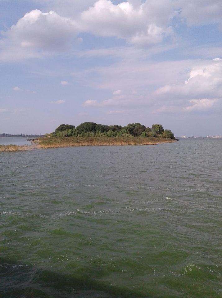 Siutghiol Insula Ovidiu
