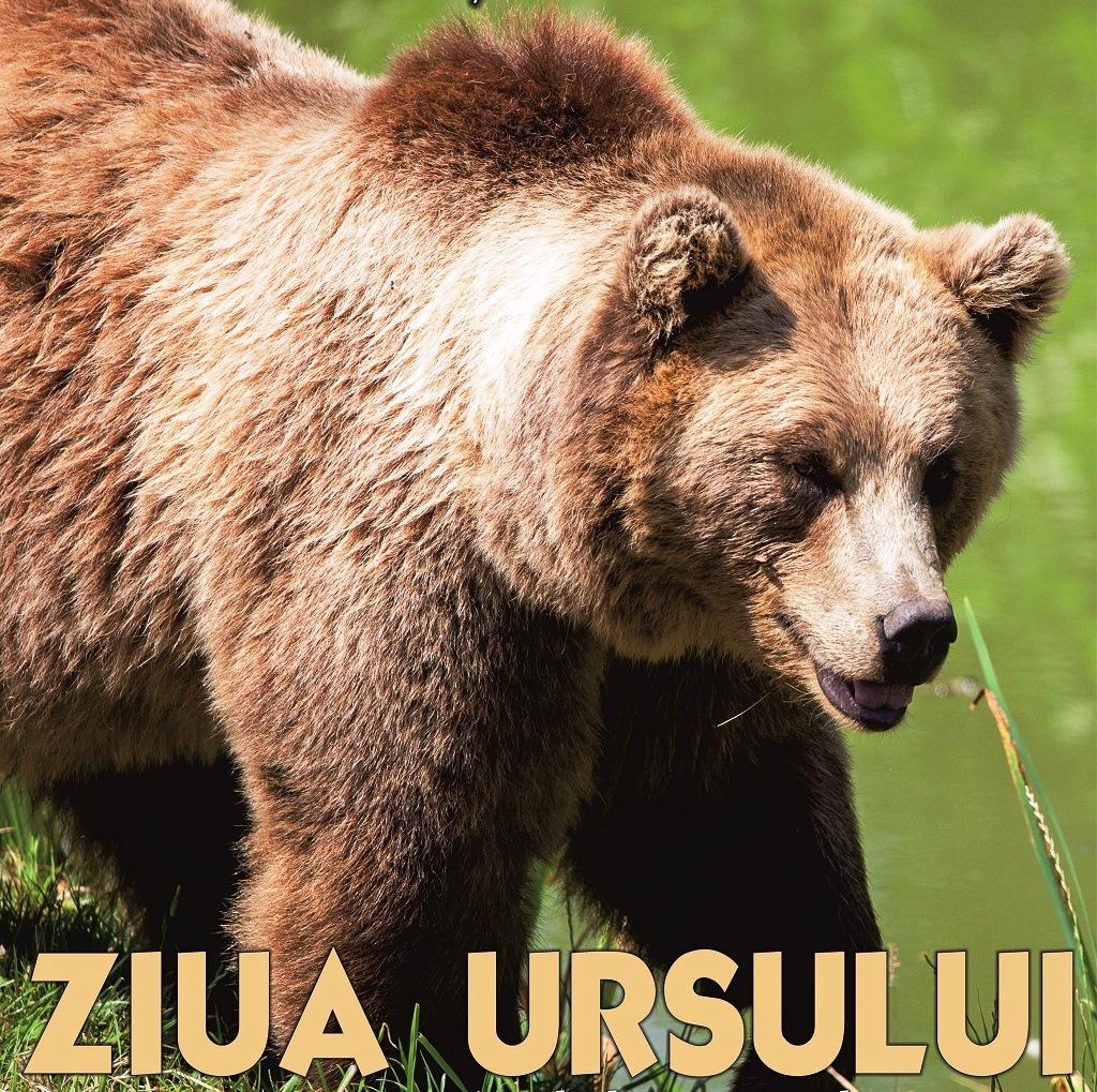 Ziua Ursului